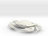 Female Blue Crab 3d printed
