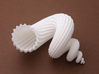 auger stellatus shell - seashell 3d printed