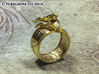 Ring - Deathring the Destroyer (Size 13) 3d printed Polished Brass
