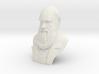 "Charles Darwin 6"" Bust 3d printed"