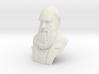 "Charles Darwin 12"" Bust 3d printed"