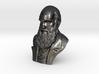 "Charles Darwin 16"" Bust 3d printed"