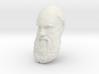 "Charles Darwin 12"" Head Wall Mount 3d printed"