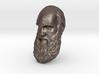 "Charles Darwin 15"" Life Size Decimated wall mount 3d printed"
