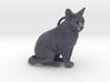 Custom Cat Ornament - Mushu 3d printed