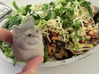 Heavy Breathing Cat 3d printed CHIPOTLE!