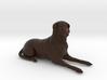 Custom Dog Figurine - Leroy 3d printed