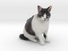 Custom Cat Figurine - The Beast 3d printed