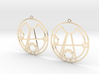 Daisy - Earrings - Series 1 3d printed