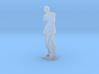 Venus de Milo (1:160) 3d printed
