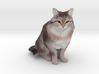 Custom Cat Figurine - Tigger 3d printed