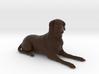 Custom Dog Figurine - Titus 3d printed