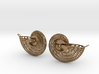 Nautilus Earring Pair (2) with attachment loop 3d printed