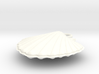 Scallop Earring Small 3d printed
