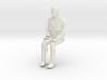 Regular Joe Sitting 1/29 scale 3d printed