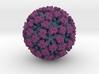 Feline Calicivirus radial colour 4M x mag 3d printed
