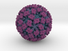 Feline Calicivirus radial colour 1Mx mag 3d printed