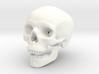 Human Skull -- Small 3d printed
