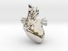 Anatomical Heart Hanger Pendant 3d printed