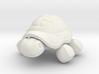 Tortoise 3d printed