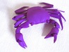 Articulated Crab (Pachygrapsus crassipes) 3d printed Violet Purple Strong & Flexible