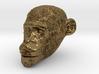 Head Chimp 3d printed