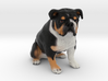Custom Dog Figurine - Wilbur 3d printed