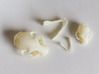 Cat skull Sculpture 3d printed View from above with parts separated
