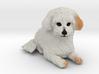 Custom Dog Figurine - Andy 3d printed