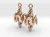 Resonator Earring Pair 3d printed