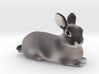 Custom Rabbit Figurine - Jelly 3d printed